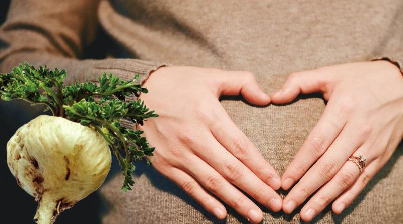 næringsstoffer til sædproduktion