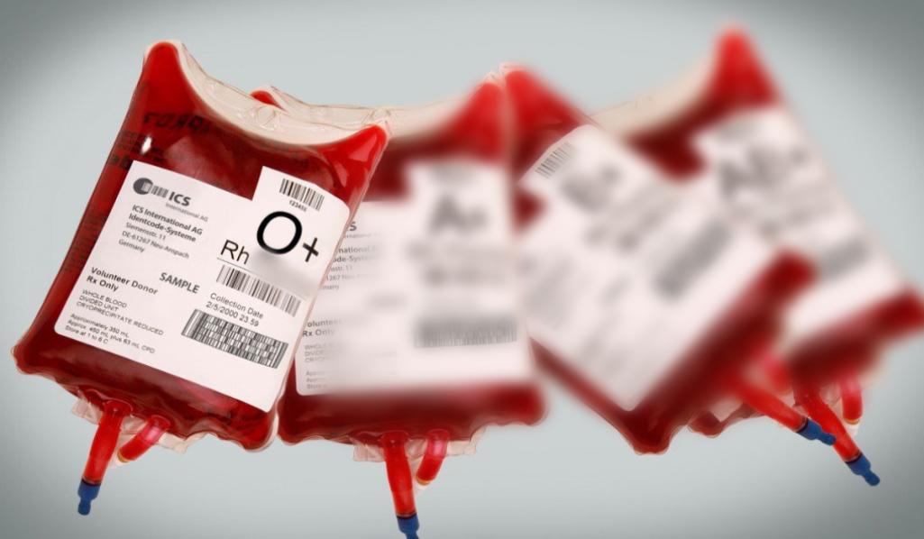 Blodtype O, jægeren