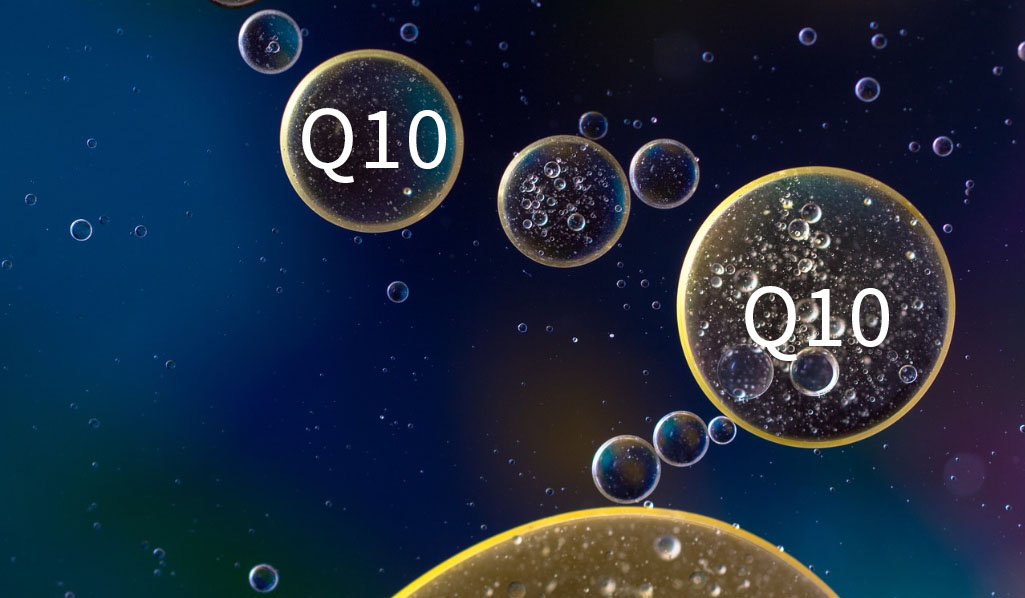 Coenzym Q10, kan forlænge livet